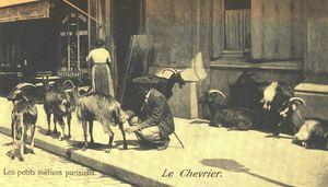 Chevrier, un petit métier parisien