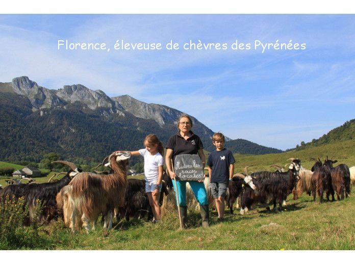 A-eleveur-pyrennees_carroussel-JPG